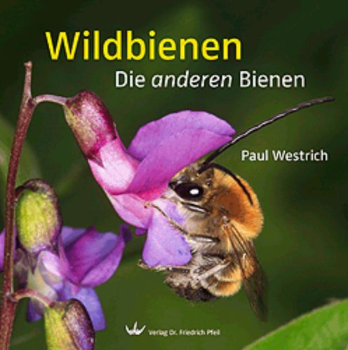 Wild bees - Book with plenty fantastic photos